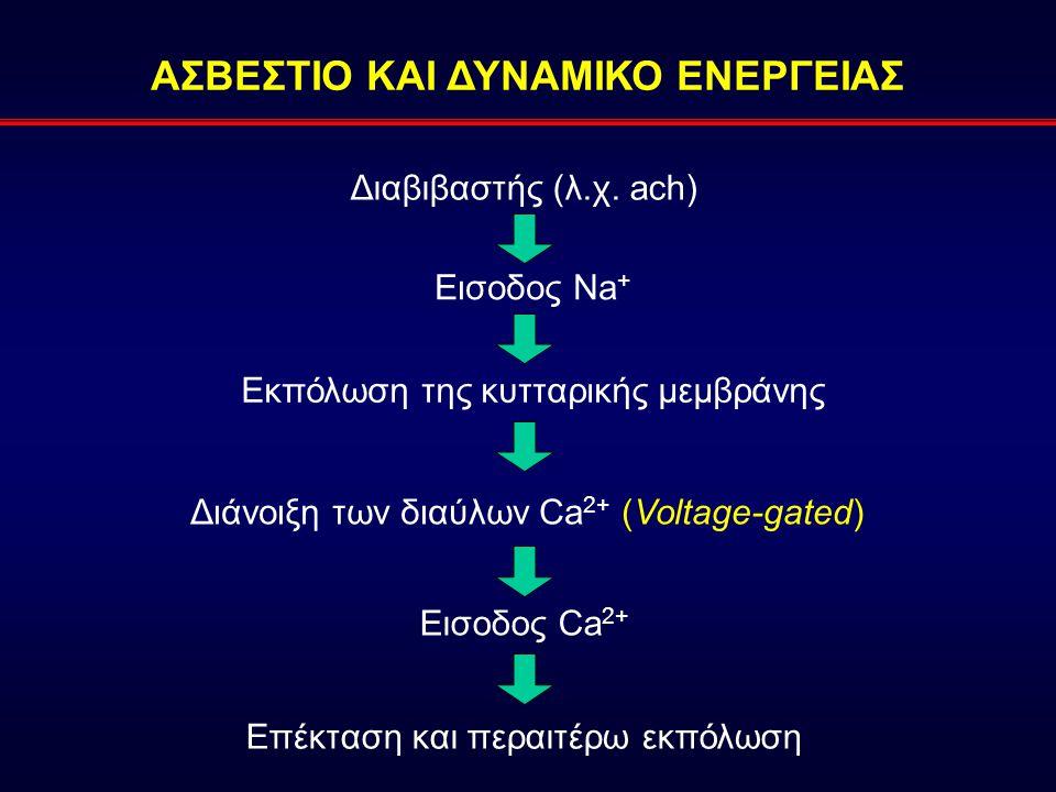 ΑΣΒΕΣΤΙΟ ΚΑΙ ΔΥΝΑΜΙΚΟ ΕΝΕΡΓΕΙΑΣ Διαβιβαστής (λ.χ. ach) Εισοδος Na + Εκπόλωση της κυτταρικής μεμβράνης Διάνοιξη των διαύλων Ca 2+ (Voltage-gated) Επέκτ
