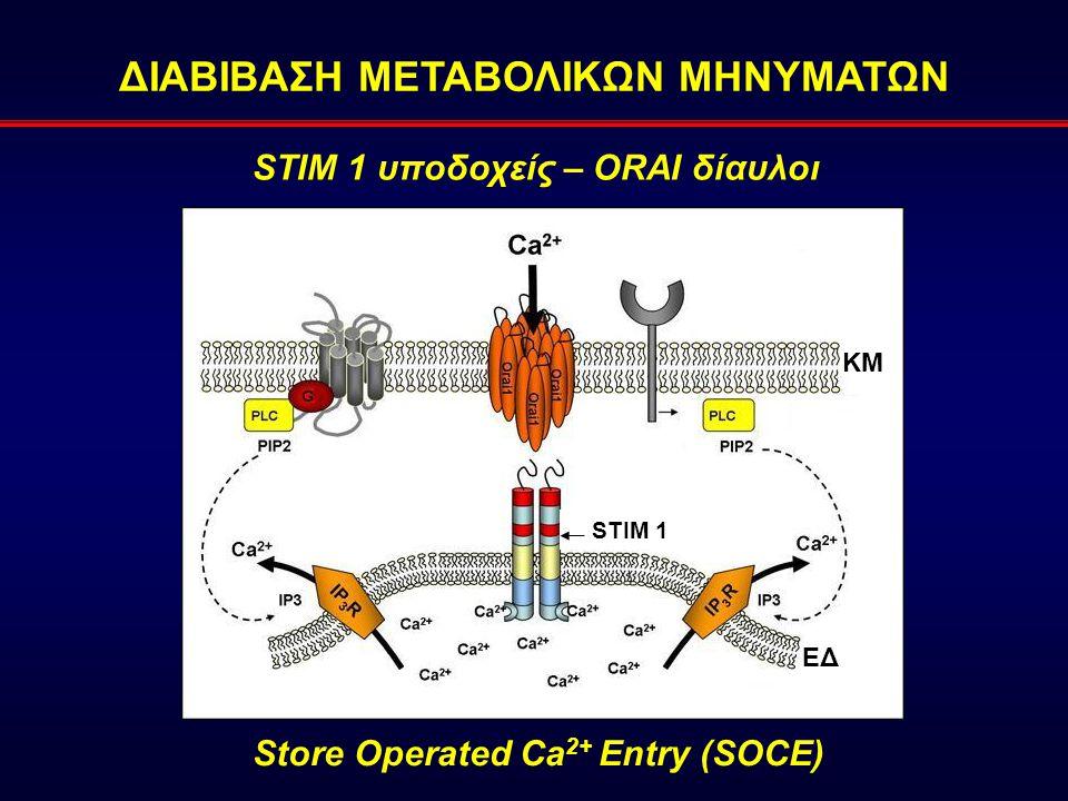 ΔΙΑΒΙΒΑΣΗ ΜΕΤΑΒΟΛΙΚΩΝ ΜΗΝΥΜΑΤΩΝ STIM 1 υποδοχείς – ORAI δίαυλοι ΚΜ STIM 1 ΕΔ Store Operated Ca 2+ Entry (SOCE)