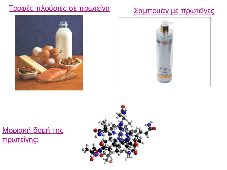 Τροφές πλούσιες σε πρωτεΐνη Σαμπουάν με πρωτεΐνες Μοριακή δομή της πρωτεΐνης: