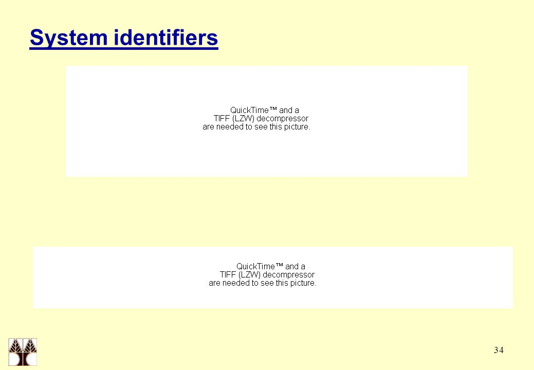 34 System identifiers