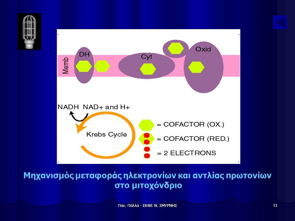 Παν. Πάλλα - ΕΚΦΕ Ν. ΣΜΥΡΝΗΣ 11 Μηχανισμός μεταφοράς ηλεκτρονίων και αντλίας πρωτονίων στο μιτοχόνδριο
