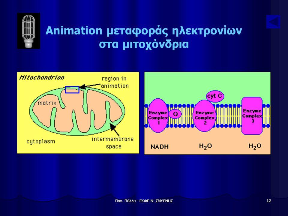 Παν. Πάλλα - ΕΚΦΕ Ν. ΣΜΥΡΝΗΣ 12 Animation μεταφοράς ηλεκτρονίων στα μιτοχόνδρια