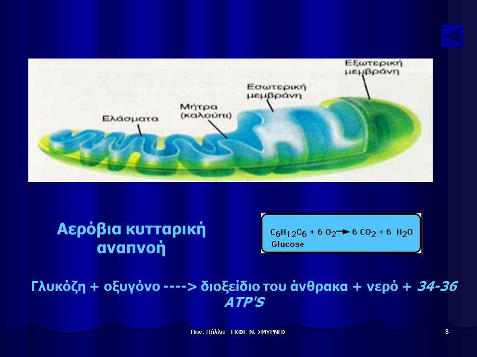 Παν. Πάλλα - ΕΚΦΕ Ν. ΣΜΥΡΝΗΣ 8 Γλυκόζη + οξυγόνο ----> διοξείδιο του άνθρακα + νερό + 34-36 ATP'S Αερόβια κυτταρική αναπνοή