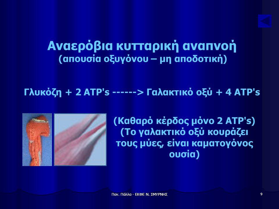 Παν. Πάλλα - ΕΚΦΕ Ν. ΣΜΥΡΝΗΣ 9 Αναερόβια κυτταρική αναπνοή (απουσία οξυγόνου – μη αποδοτική) Γλυκόζη + 2 ATP's ------> Γαλακτικό οξύ + 4 ATP's (Καθαρό