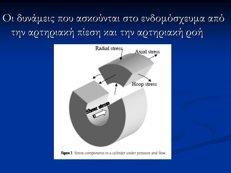 Οι δυνάμεις που ασκούνται στο ενδομόσχευμα από την αρτηριακή πίεση και την αρτηριακή ροή