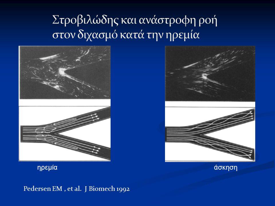 ηρεμία άσκηση Pedersen EM, et al. J Biomech 1992