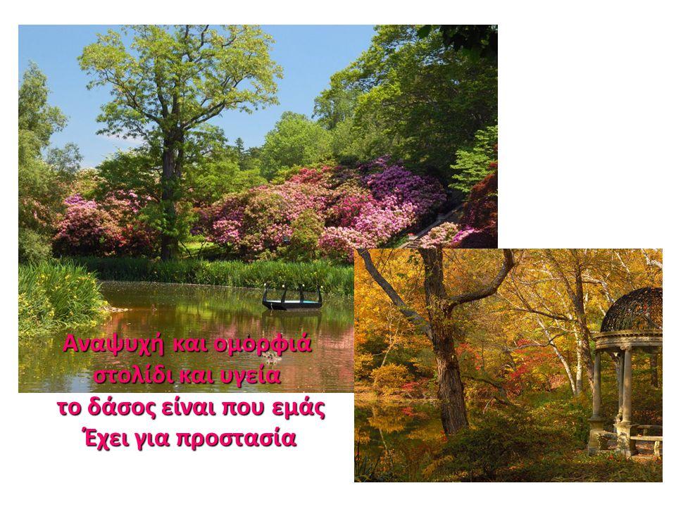 Αναψυχή και ομορφιά στολίδι και υγεία το δάσος είναι που εμάς Έχει για προστασία