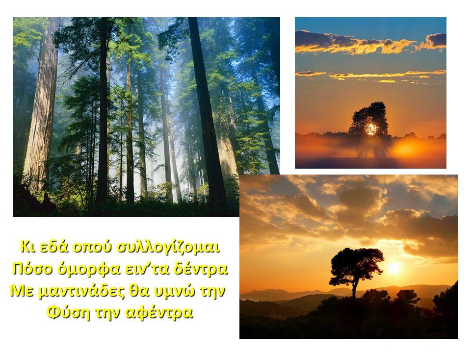Κι εδά οπού συλλογίζομαι Πόσο όμορφα ειν'τα δέντρα Με μαντινάδες θα υμνώ την Φύση την αφέντρα