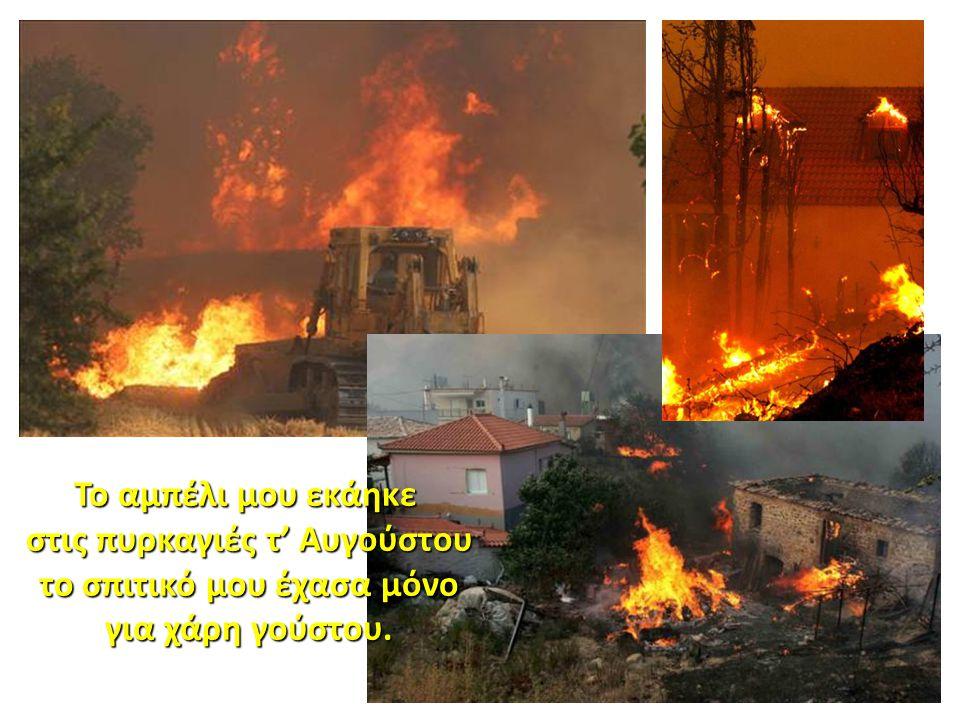 Το αμπέλι μου εκάηκε στις πυρκαγιές τ' Αυγούστου στις πυρκαγιές τ' Αυγούστου το σπιτικό μου έχασα μόνο το σπιτικό μου έχασα μόνο για χάρη γούστου. για