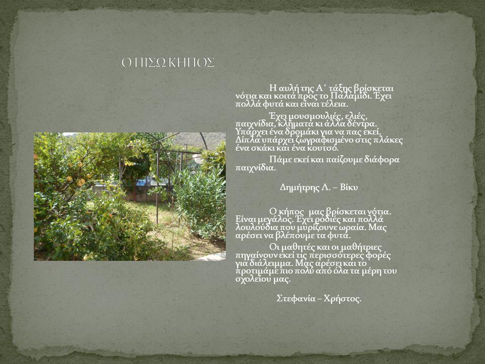 Η αυλή της Α΄ τάξης βρίσκεται νότια και κοιτά προς το Παλαμίδι. Έχει πολλά φυτά και είναι τέλεια. Έχει μουσμουλιές, ελιές, παιχνίδια, κλήματα κι άλλα