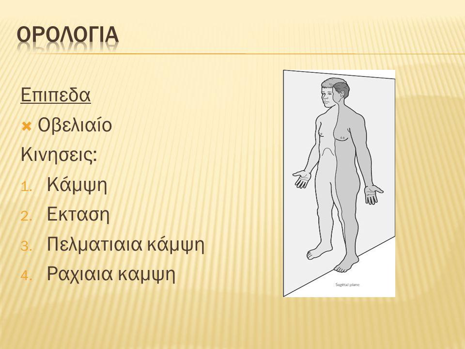 Επιπεδα  Οβελιαίο Κινησεις: 1. Κάμψη 2. Εκταση 3. Πελματιαια κάμψη 4. Ραχιαια καμψη