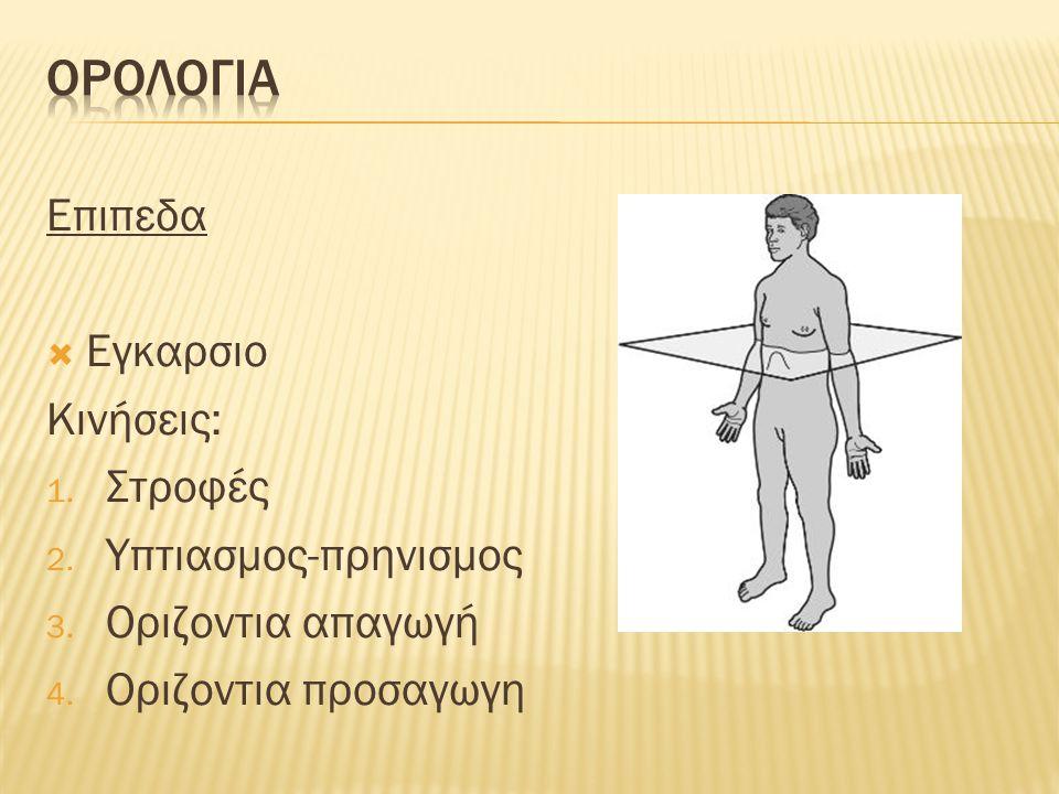 Επιπεδα  Εγκαρσιο Κινήσεις: 1. Στροφές 2. Υπτιασμος-πρηνισμος 3. Οριζοντια απαγωγή 4. Οριζοντια προσαγωγη