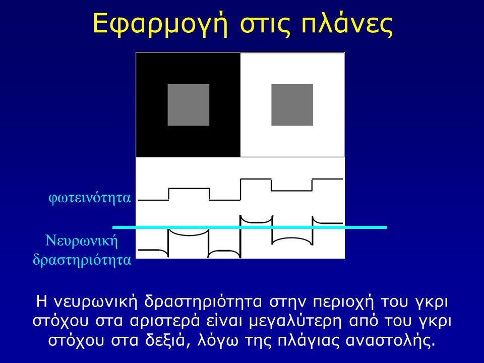 Εφαρμογή στις πλάνες Η νευρωνική δραστηριότητα στην περιοχή του γκρι στόχου στα αριστερά είναι μεγαλύτερη από του γκρι στόχου στα δεξιά, λόγω της πλάγ