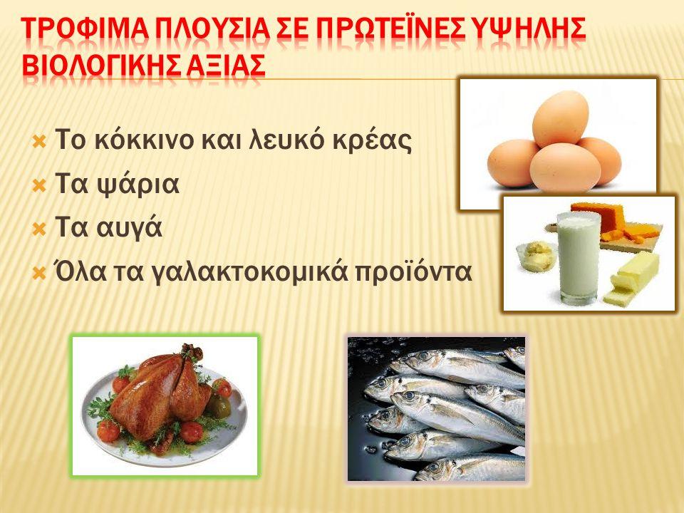  Το κόκκινο και λευκό κρέας  Τα ψάρια  Τα αυγά  Όλα τα γαλακτοκομικά προϊόντα