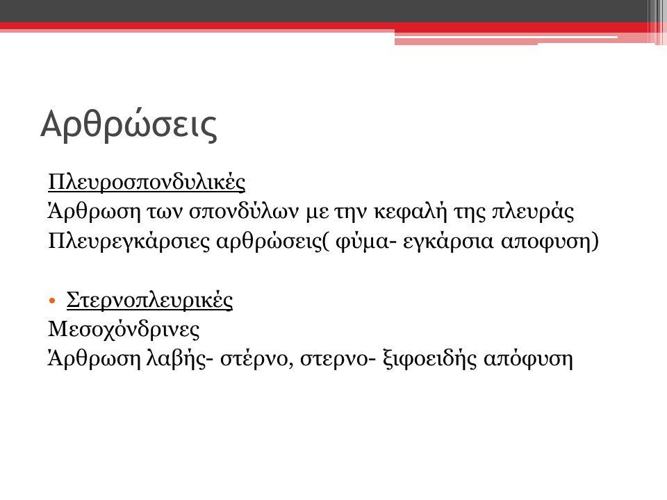 Αρθρώσεις Πλευροσπονδυλικές Άρθρωση των σπονδύλων με την κεφαλή της πλευράς Πλευρεγκάρσιες αρθρώσεις( φύμα- εγκάρσια αποφυση) Στερνοπλευρικές Μεσοχόνδ