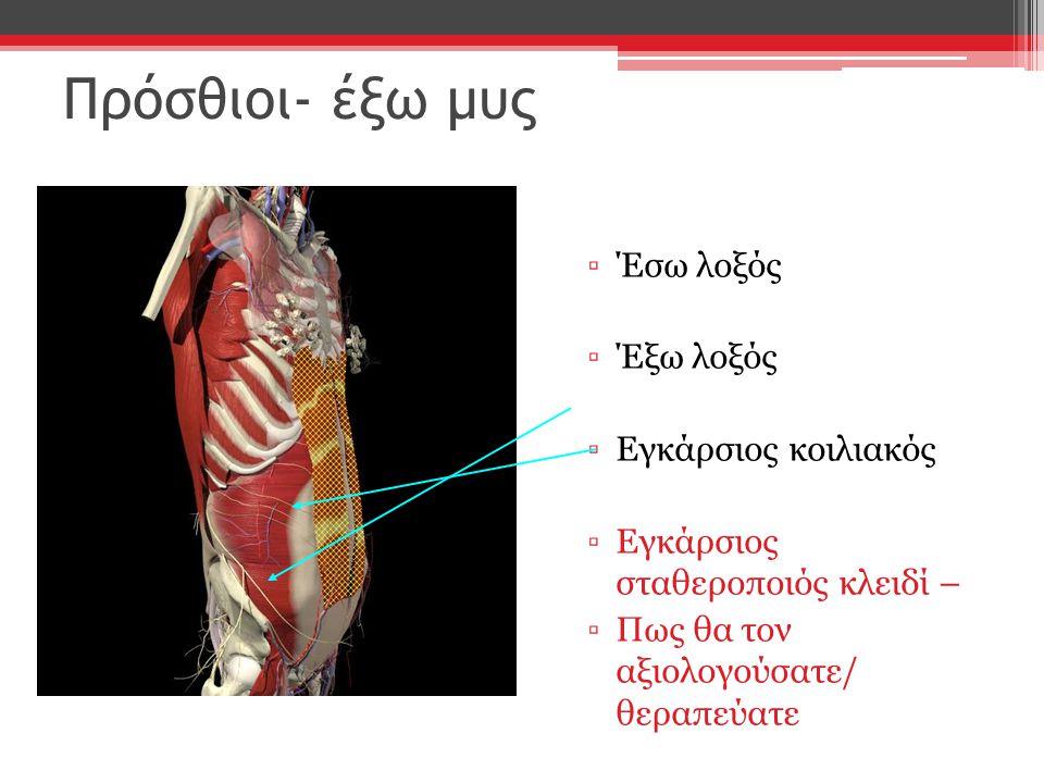 Πρόσθιοι- έξω μυς ▫Έσω λοξός ▫Έξω λοξός ▫Εγκάρσιος κοιλιακός ▫Εγκάρσιος σταθεροποιός κλειδί – ▫Πως θα τον αξιολογούσατε/ θεραπεύατε