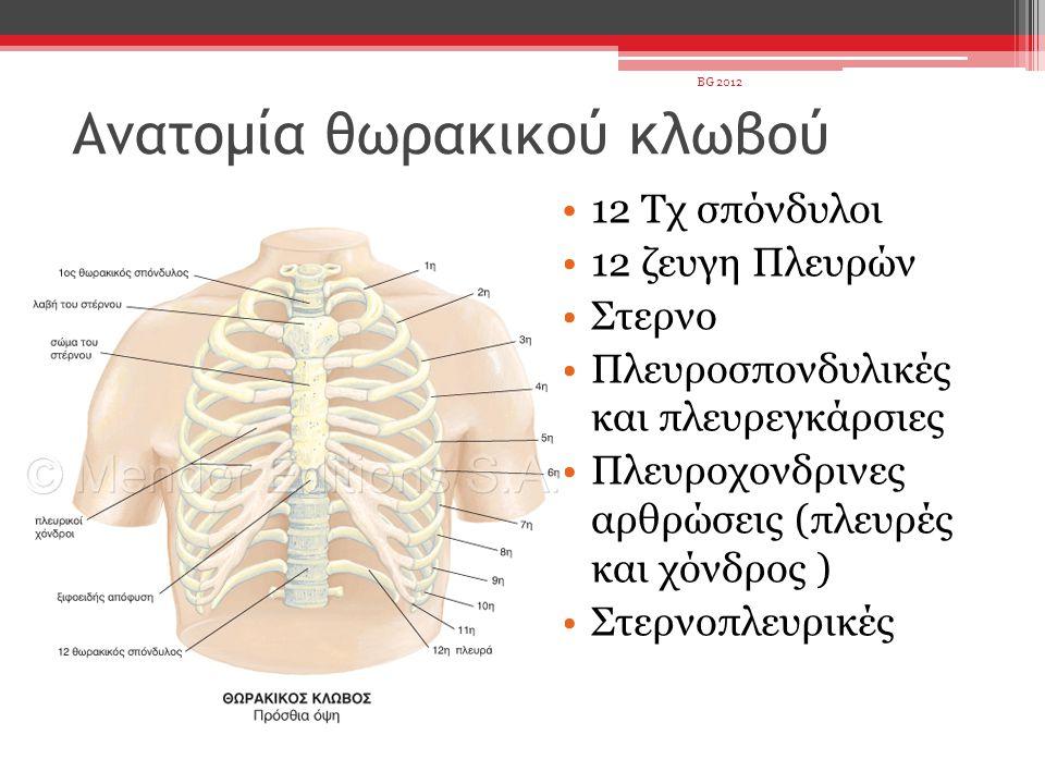 Ανατομία θωρακικού κλωβού 12 Τχ σπόνδυλοι 12 ζευγη Πλευρών Στερνο Πλευροσπονδυλικές και πλευρεγκάρσιες Πλευροχονδρινες αρθρώσεις (πλευρές και χόνδρος