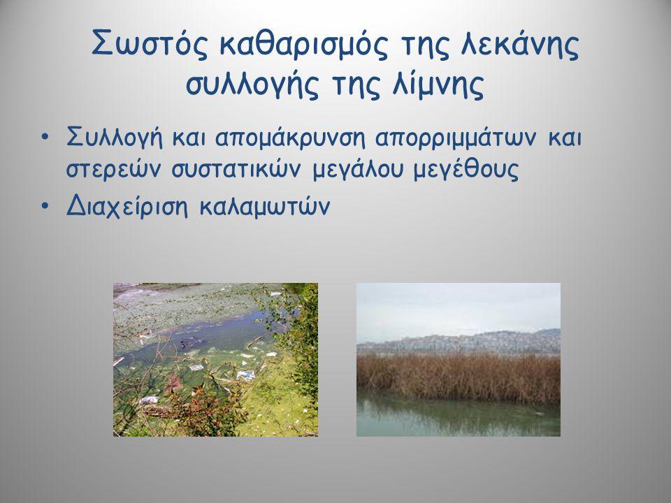Σωστός καθαρισμός της λεκάνης συλλογής της λίμνης Συλλογή και απομάκρυνση απορριμμάτων και στερεών συστατικών μεγάλου μεγέθους Διαχείριση καλαμωτών
