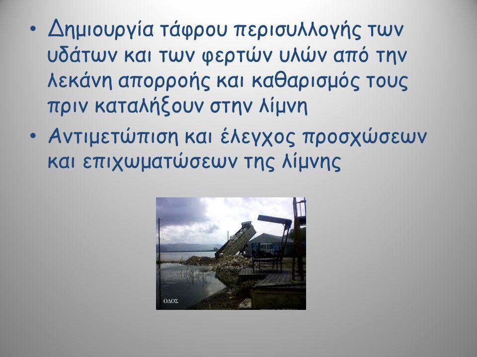 Δημιουργία τάφρου περισυλλογής των υδάτων και των φερτών υλών από την λεκάνη απορροής και καθαρισμός τους πριν καταλήξουν στην λίμνη Αντιμετώπιση και έλεγχος προσχώσεων και επιχωματώσεων της λίμνης