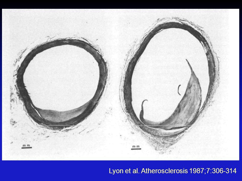Lyon et al. Atherosclerosis 1987;7:306-314
