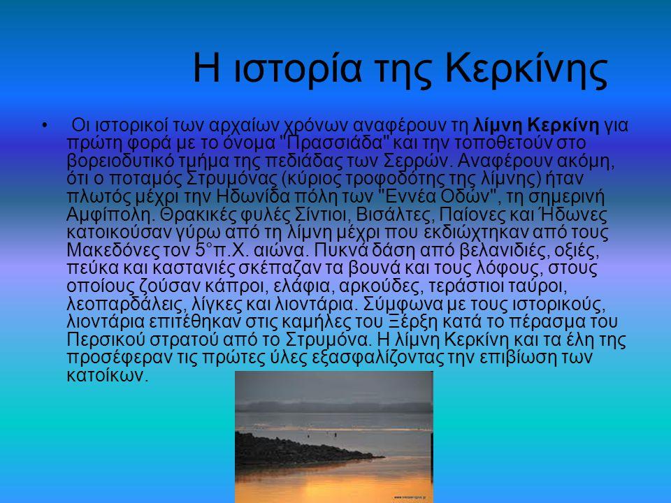Η ιστορία της Κερκίνης Οι ιστορικοί των αρχαίων χρόνων αναφέρουν τη λίμνη Κερκίνη για πρώτη φορά με το όνομα