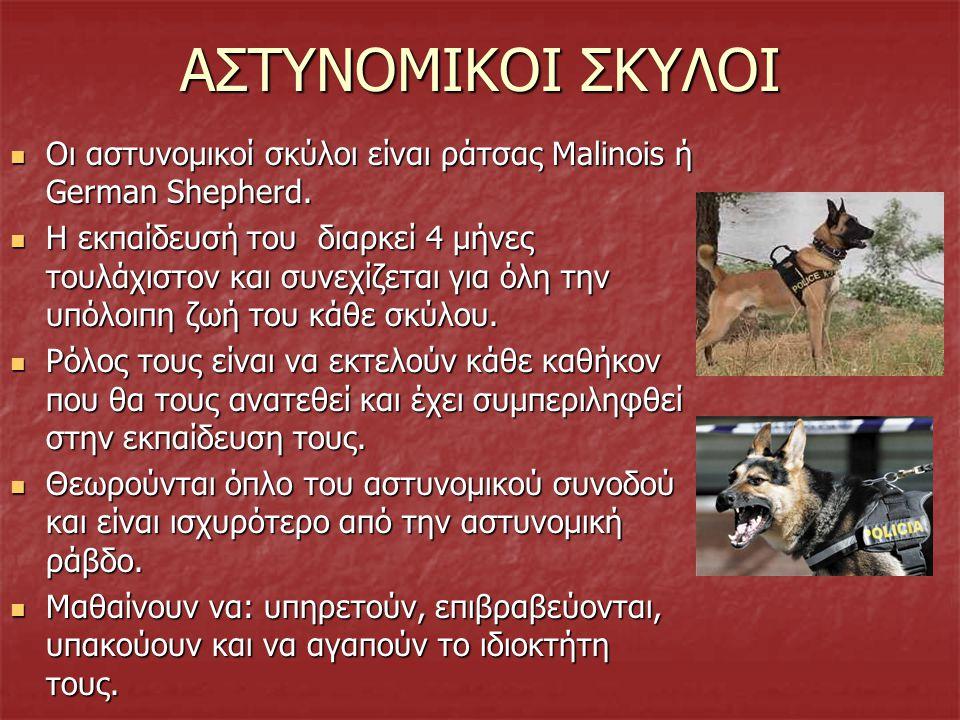 ΚΑΤΟΙΚΙΔΙΑ ΚΑΙ ΑΝΘΡΩΠΟΙ ΜΕ ΕΙΔΙΚΕΣ ΑΝΑΓΚΕΣ Τα ζώα είναι καλοί σύντροφοι και έχουν ευεργετικές ιδιότητες για τον ανθρώπινο οργανισμό. Τα ζώα είναι καλο