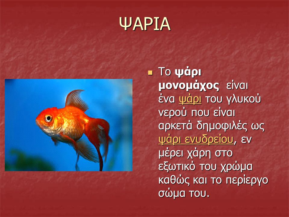 ΨΑΡΙΑ Το ψάρι μονομάχος είναι ένα ψάρι του γλυκού νερού που είναι αρκετά δημοφιλές ως ψάρι ενυδρείου, εν μέρει χάρη στο εξωτικό του χρώμα καθώς και το περίεργο σώμα του.