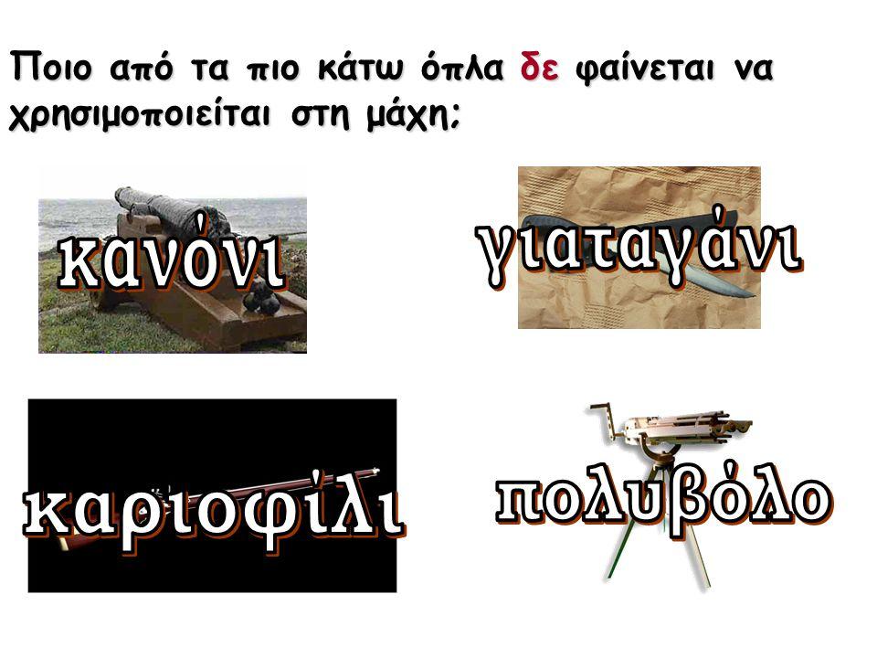 Στη μάχη, οι αμυνόμενοι ήταν οι Έλληνες ή οι Τούρκοι;