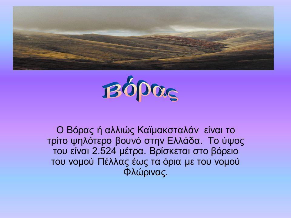Ο Βόρας ή αλλιώς Καϊμακσταλάν είναι το τρίτο ψηλότερο βουνό στην Ελλάδα. Το ύψος του είναι 2.524 μέτρα. Βρίσκεται στο βόρειο του νομού Πέλλας έως τα ό
