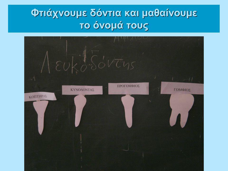 Φτιάχνουμε δόντια και μαθαίνουμε το όνομά τους