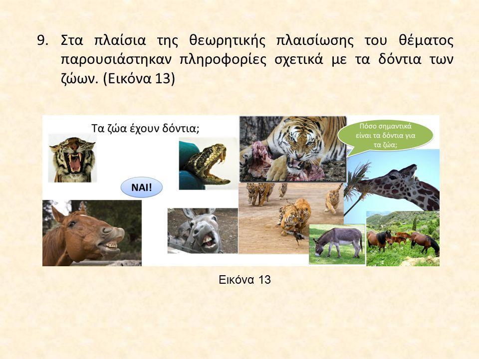 Εικόνα 13 9.Στα πλαίσια της θεωρητικής πλαισίωσης του θέματος παρουσιάστηκαν πληροφορίες σχετικά με τα δόντια των ζώων. (Εικόνα 13)