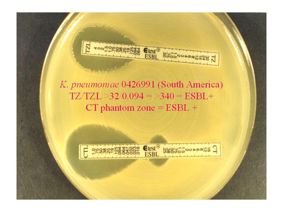 Ανάγνωση αποτελεσμάτων Etest ® AmpC Ίδια κριτήρια όπως στα Etest ESBL & MBL: – CNI 3 αραιώσεις πιο κάτω από το CN ή CN/CNI ≥ 8 – Αποδόμηση της έλλειψης ή ζώνη φάντασμα ΑmpC (+) CN/CNI :>32/ 32/<0.5μg/ml CN/CNI : 6/<0.5μg/ml