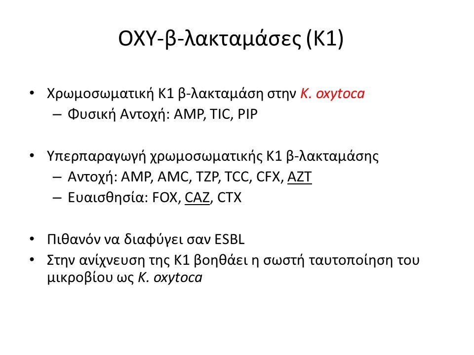 ΟΧΥ-β-λακταμάσες (Κ1) Χρωμοσωματική Κ1 β-λακταμάση στην K.