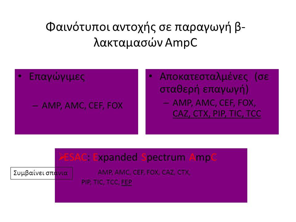 Φαινότυποι αντοχής σε παραγωγή β- λακταμασών AmpC Επαγώγιμες – AMP, AMC, CEF, FOX Αποκατεσταλμένες (σε σταθερή επαγωγή) – AMP, AMC, CEF, FOX, CAZ, CTX, PIP, TIC, TCC  ESAC: Expanded Spectrum AmpC AMP, AMC, CEF, FOX, CAZ, CTX, PIP, TIC, TCC, FEP Συμβαίνει σπάνια