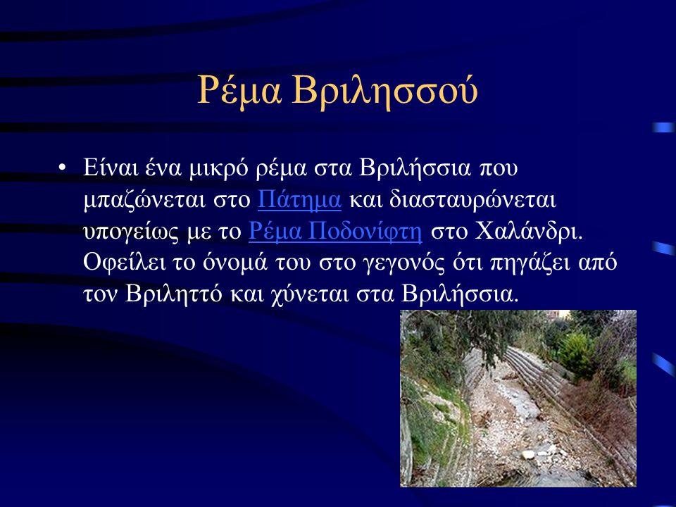 Ρέμα Βριλησσού Είναι ένα μικρό ρέμα στα Βριλήσσια που μπαζώνεται στο Πάτημα και διασταυρώνεται υπογείως με το Ρέμα Ποδονίφτη στο Χαλάνδρι. Οφείλει το