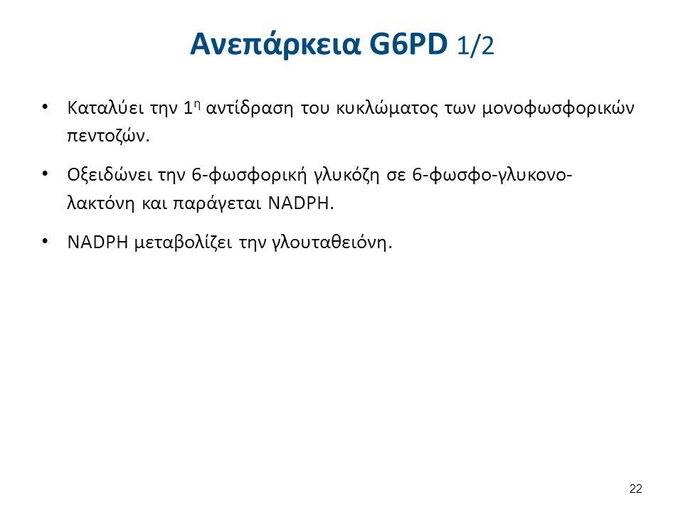 Ανεπάρκεια G6PD 1/2 Καταλύει την 1 η αντίδραση του κυκλώματος των μονοφωσφορικών πεντοζών. Οξειδώνει την 6-φωσφορική γλυκόζη σε 6-φωσφο-γλυκονο- λακτό