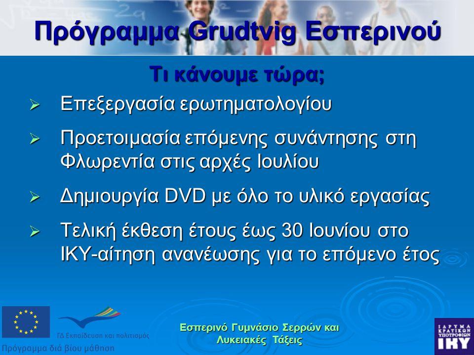 Εσπερινό Γυμνάσιο Σερρών και Λυκειακές Τάξεις Τι κάνουμε τώρα;  Επεξεργασία ερωτηματολογίου  Προετοιμασία επόμενης συνάντησης στη Φλωρεντία στις αρχές Ιουλίου  Δημιουργία DVD με όλο το υλικό εργασίας  Τελική έκθεση έτους έως 30 Ιουνίου στο ΙΚΥ-αίτηση ανανέωσης για το επόμενο έτος Πρόγραμμα Grudtvig Εσπερινού