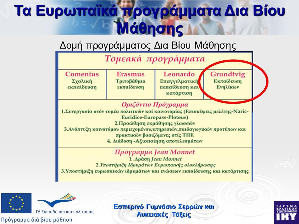 Εσπερινό Γυμνάσιο Σερρών και Λυκειακές Τάξεις Δομή προγράμματος Δια Βίου Μάθησης Τα Ευρωπαϊκά προγράμματα Δια Βίου Μάθησης