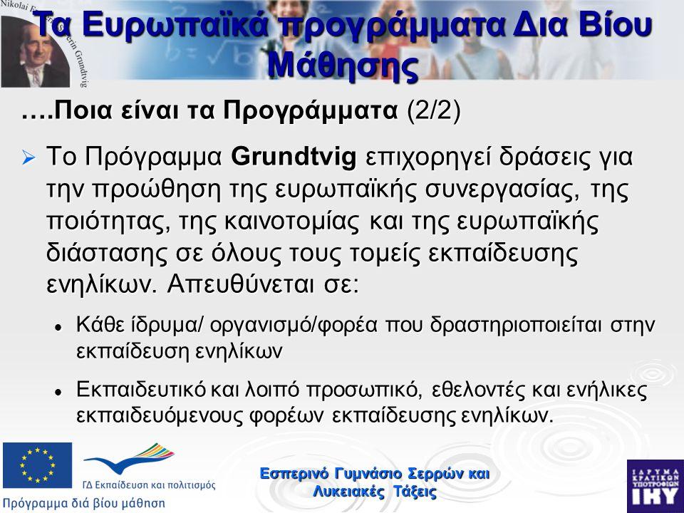 Εσπερινό Γυμνάσιο Σερρών και Λυκειακές Τάξεις ….Ποια είναι τα Προγράμματα (2/2)  Το Πρόγραμμα Grundtvig επιχορηγεί δράσεις για την προώθηση της ευρωπαϊκής συνεργασίας, της ποιότητας, της καινοτομίας και της ευρωπαϊκής διάστασης σε όλους τους τομείς εκπαίδευσης ενηλίκων.