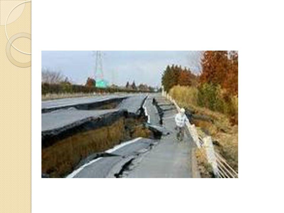 Ο υποθαλάσσιος αυτός σεισμός, ο ισχυρότερος των τελευταίων 40 ετών προκάλεσε τσουνάμι που έπληξε τις ακτές της νοτιο - ανατολικής Ασίας με αποτέλεσμα να χάσουν τη ζωή τους περισσότεροι από 220.000 άνθρωποι.