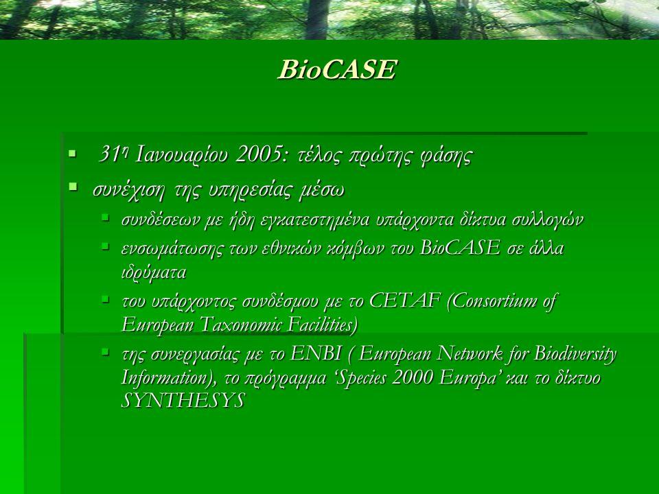 BioCASE  31 η Ιανουαρίου 2005: τέλος πρώτης φάσης  συνέχιση της υπηρεσίας μέσω  συνδέσεων με ήδη εγκατεστημένα υπάρχοντα δίκτυα συλλογών  ενσωμάτω