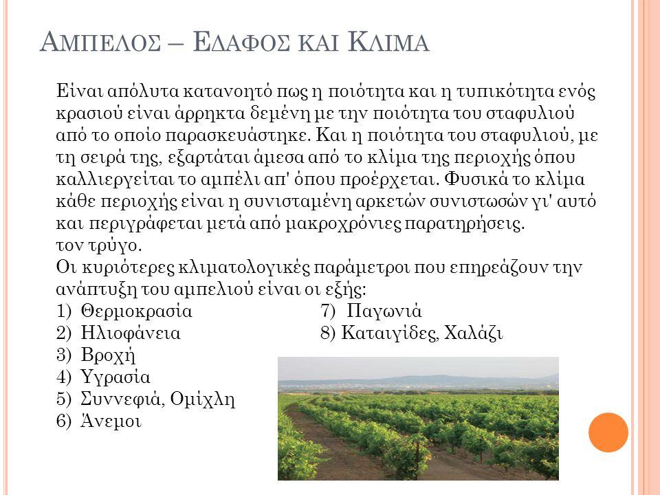 Α ΜΠΕΛΟΣ – Ε ΔΑΦΟΣ ΚΑΙ Κ ΛΙΜΑ Είναι απόλυτα κατανοητό πως η ποιότητα και η τυπικότητα ενός κρασιού είναι άρρηκτα δεμένη με την ποιότητα του σταφυλιού από το οποίο παρασκευάστηκε.