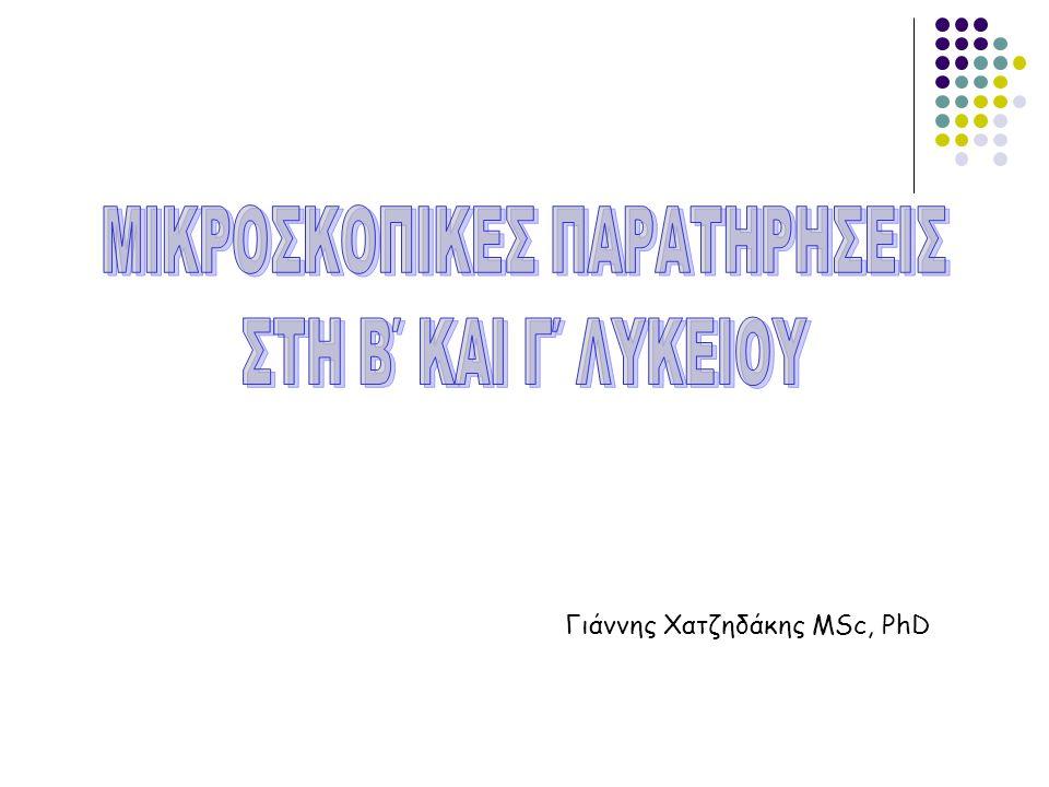 Γιάννης Χατζηδάκης MSc, PhD