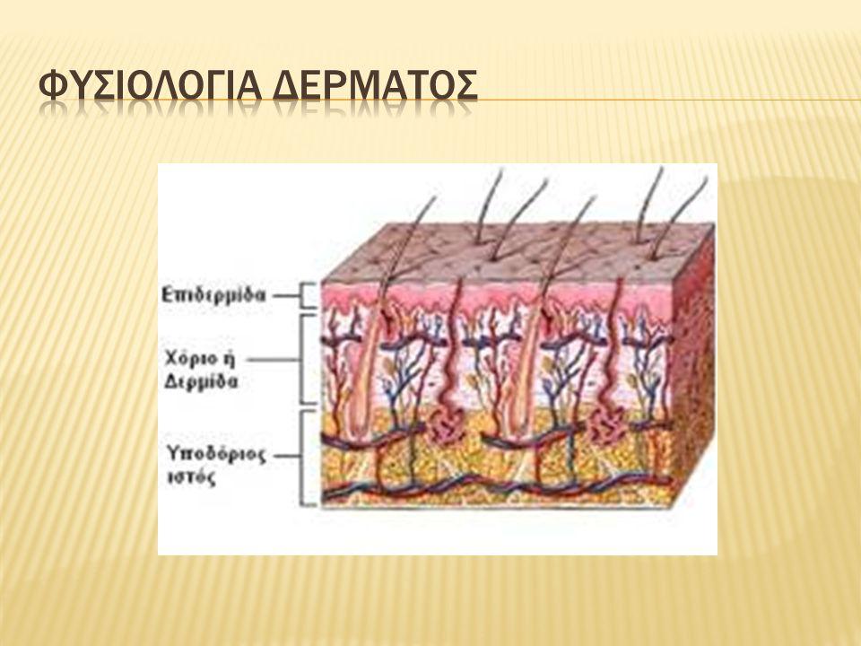  Το βάθος χαρακτηρίζεται ανάλογα με τα στρώματα του δέρματος που έχουν καταστραφεί.