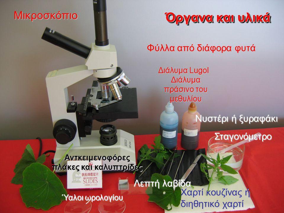 Μικροσκόπιο Αντκειμενοφόρες πλάκες και καλυπτρίδες Νυστέρι ή ξυραφάκι Σταγονόμετρο Λεπτή λαβίδα Λεπτή λαβίδα Χαρτί κουζίνας ή διηθητικό χαρτί Ύαλοι ωρολογίου Φύλλα από διάφορα φυτά Προαιρετικά: Διάλυμα Lugol, διάλυμα πράσινο του μεθυλίου Όργανα και υλικά