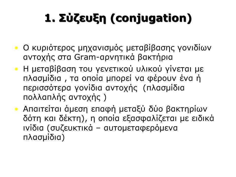 1. Σύζευξη (conjugation) Ο κυριότερος μηχανισμός μεταβίβασης γονιδίων αντοχής στα Gram-αρνητικά βακτήρια Η μεταβίβαση του γενετικού υλικού γίνεται με