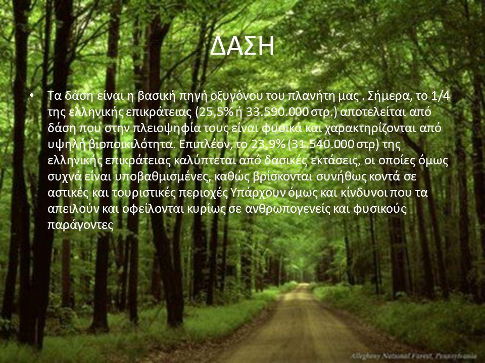 ΔΑΣΗ Τα δάση είναι η βασική πηγή οξυγόνου του πλανήτη μας. Σήμερα, το 1/4 της ελληνικής επικράτειας (25,5% ή 33.590.000 στρ.) αποτελείται από δάση που