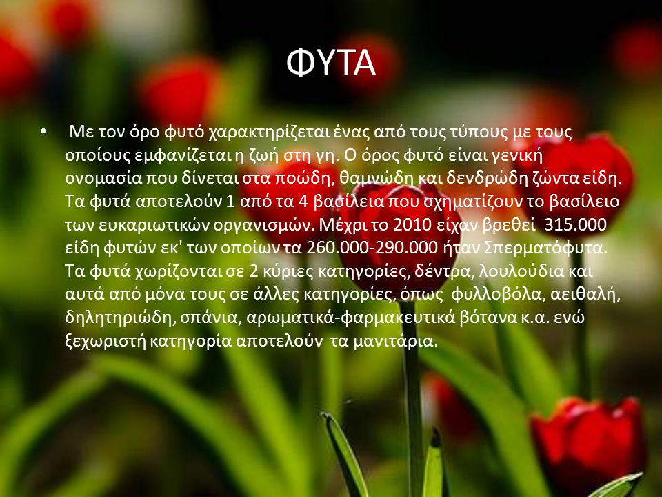 ΔΙΑΦΟΡΑ ΔΕΝΤΡΑ ΚΑΙ ΦΥΤΑ ΔΕΝΤΡΑ Λεύκη τρέμουσα: φυλλοβόλο δέντρο, ύψους 25μ.συναντάται κυρίως σε ορεινές περιοχές της Μακεδονίας και της Θεσσαλίας.