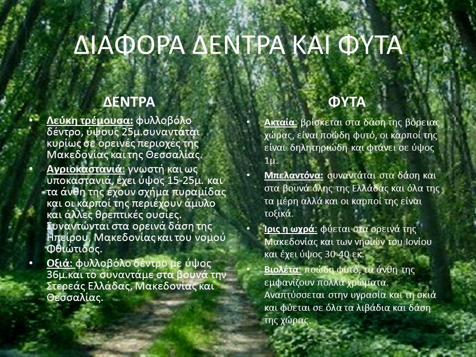 ΔΙΑΦΟΡΑ ΔΕΝΤΡΑ ΚΑΙ ΦΥΤΑ ΔΕΝΤΡΑ Λεύκη τρέμουσα: φυλλοβόλο δέντρο, ύψους 25μ.συναντάται κυρίως σε ορεινές περιοχές της Μακεδονίας και της Θεσσαλίας. Αγρ