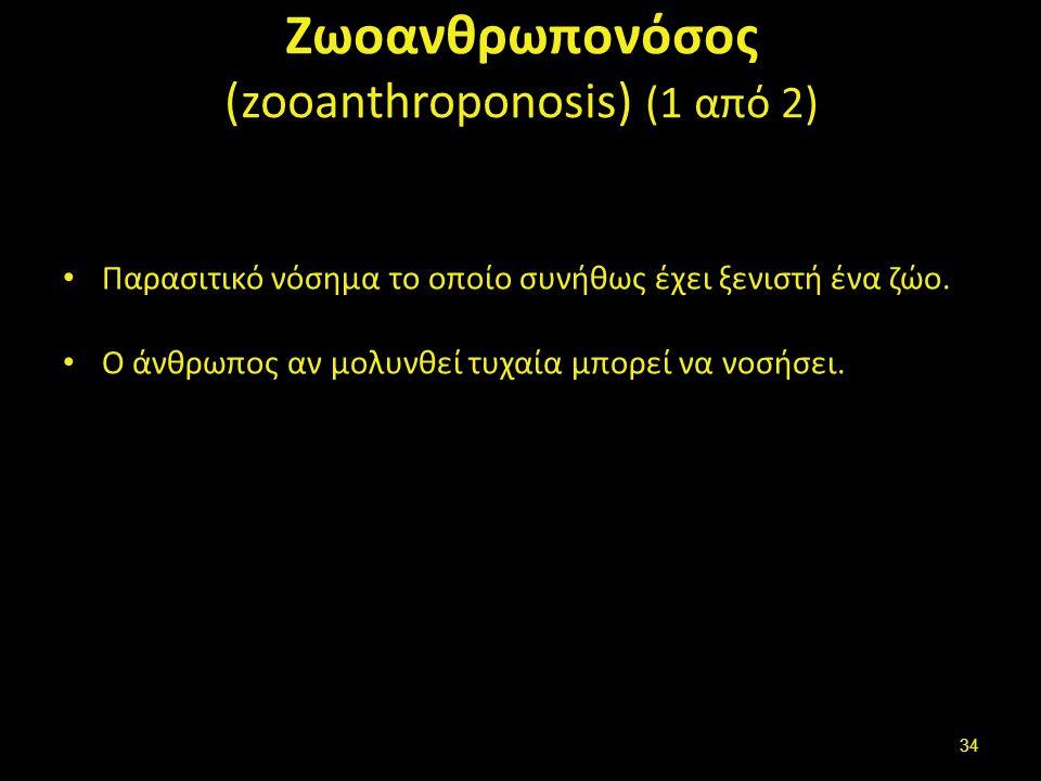 Ζωοανθρωπονόσος (zooanthroponosis) (1 από 2) Παρασιτικό νόσημα το οποίο συνήθως έχει ξενιστή ένα ζώο.